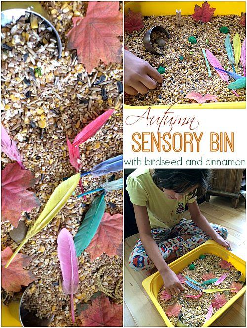 Autumn Sensory Bin with birdseed and cinnamon