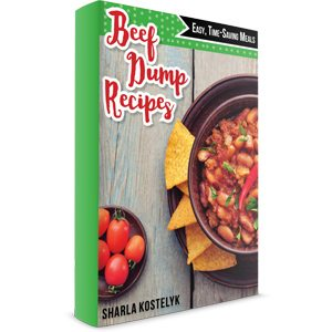 Beef Dump Recipes book