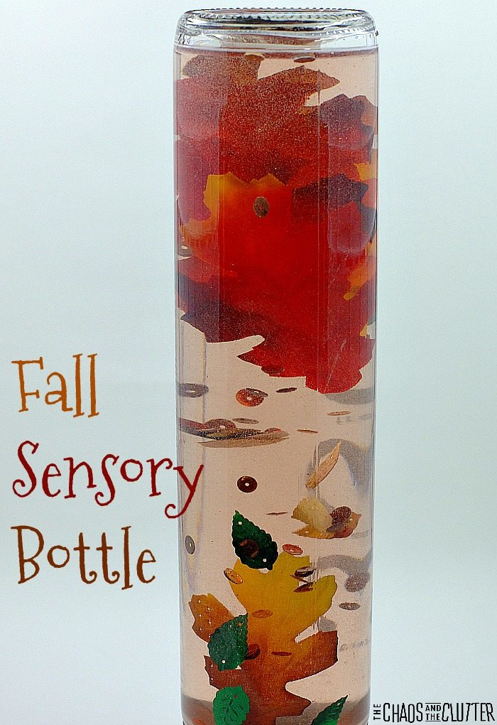 This Fall Sensory Bottle is lovely for discovery of the season and can be used as a calm down bottle as well.