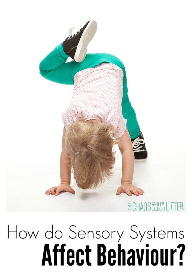 How is behaviour affected by your child's sensory systems?