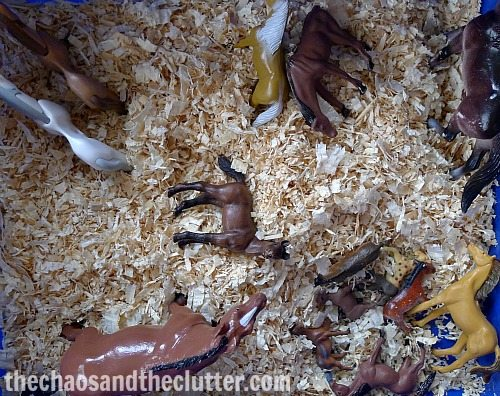horse sensory bin