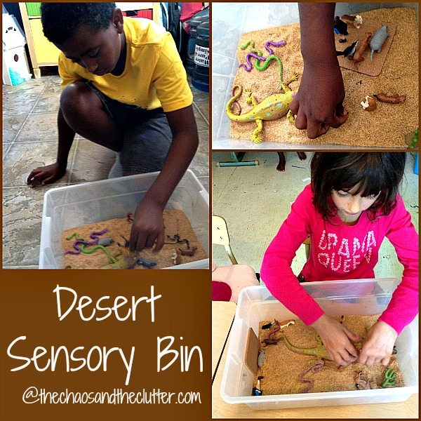 Desert Sensory Bin Play