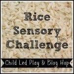 rice sensory bin challenge