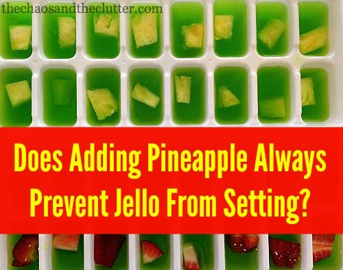 Does Adding Pineapple Always Prevent Jello from Setting?
