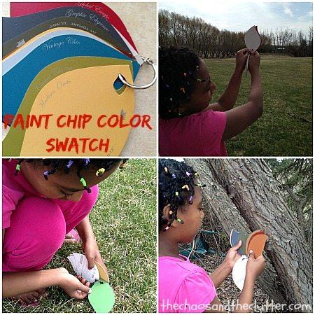 Paint Chip Color Swatch