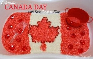 Canada Day Sensory Bin