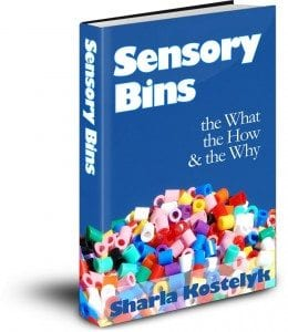 Sensory Bins ebook