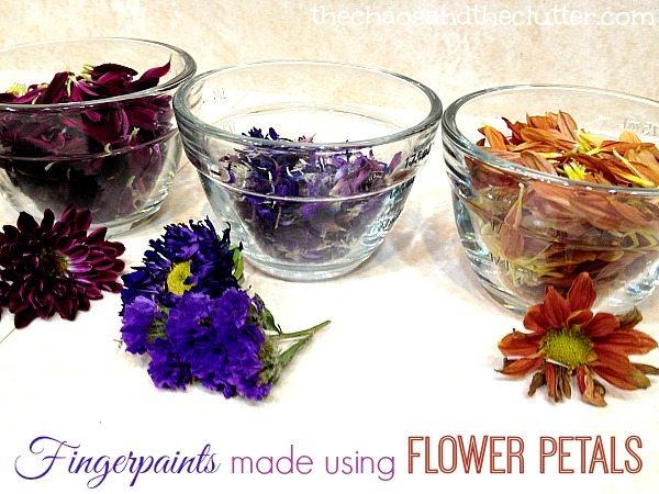 Homemade Fingerpaints made with Flower Petals