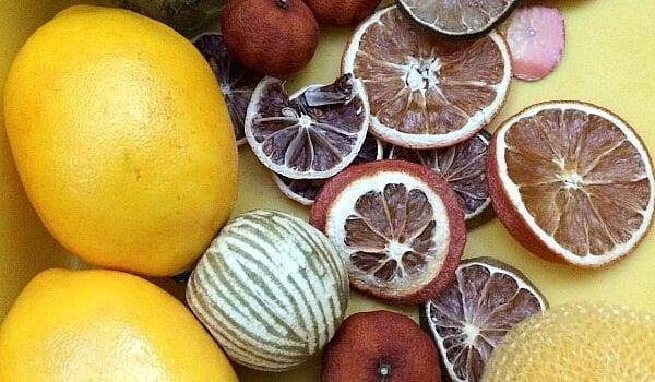 Citrus Sensory Bin