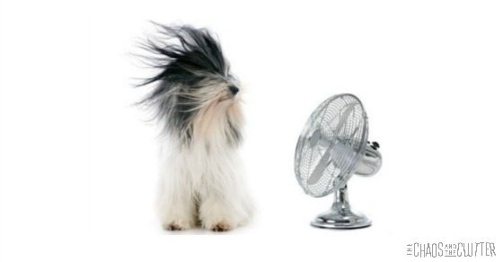 Tricks to Keep Your House Cool This Summer