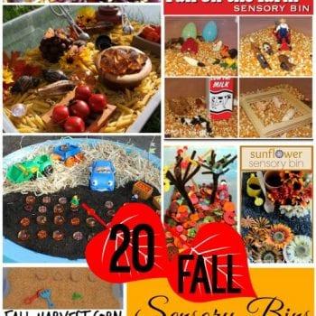 20-fall-sensory-bins