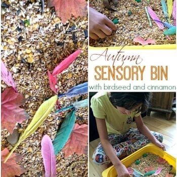 Autumn Sensory Bin with birdseed and cinnamon