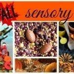 fall sensory bins