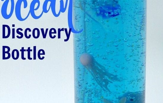 Ocean Discovery Bottle that keeps items suspended including the glow in the dark jellyfish and starfish