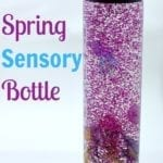 Spring Sensory Bottle with butterflies, flowers and bugs