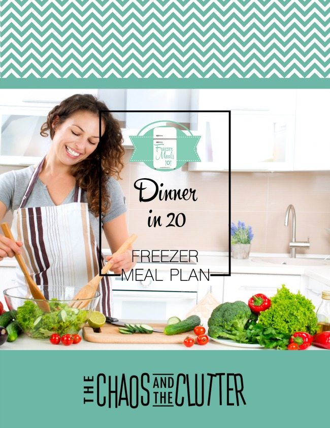 Dinner in 20 Freezer Meal Menu Plan