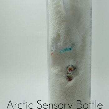 Bring a bit of the North home with this Arctic Sensory Bottle
