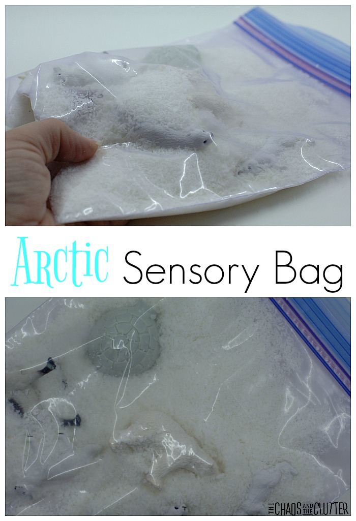 "This arctic sensory bag uses a rather unconventional items as the ""snow"". It is a cute activity to add to a winter or arctic theme unit."