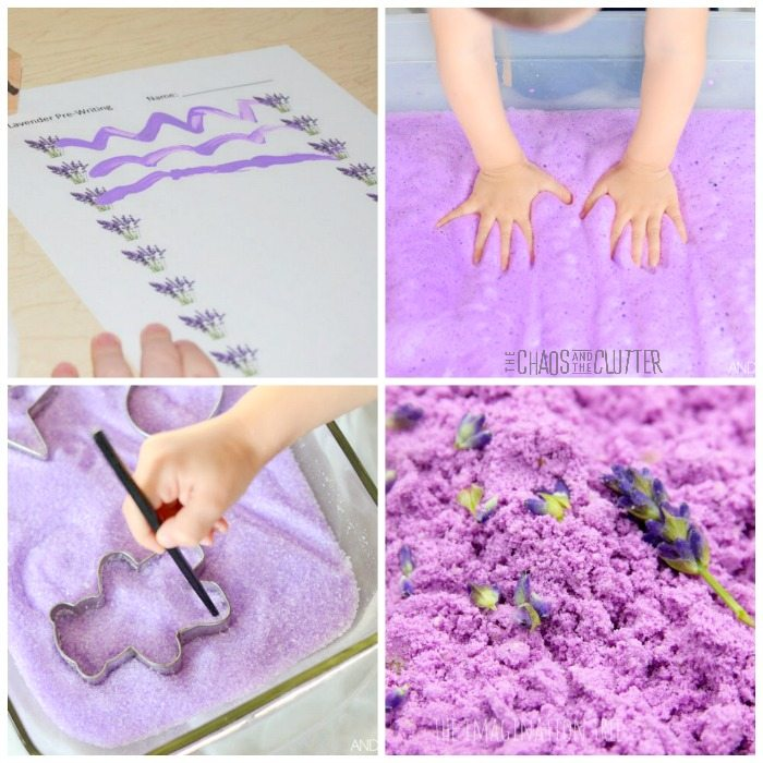 In this post, we share some wonderful Calming Lavender Sensory Activities that are sure to hit the spot!