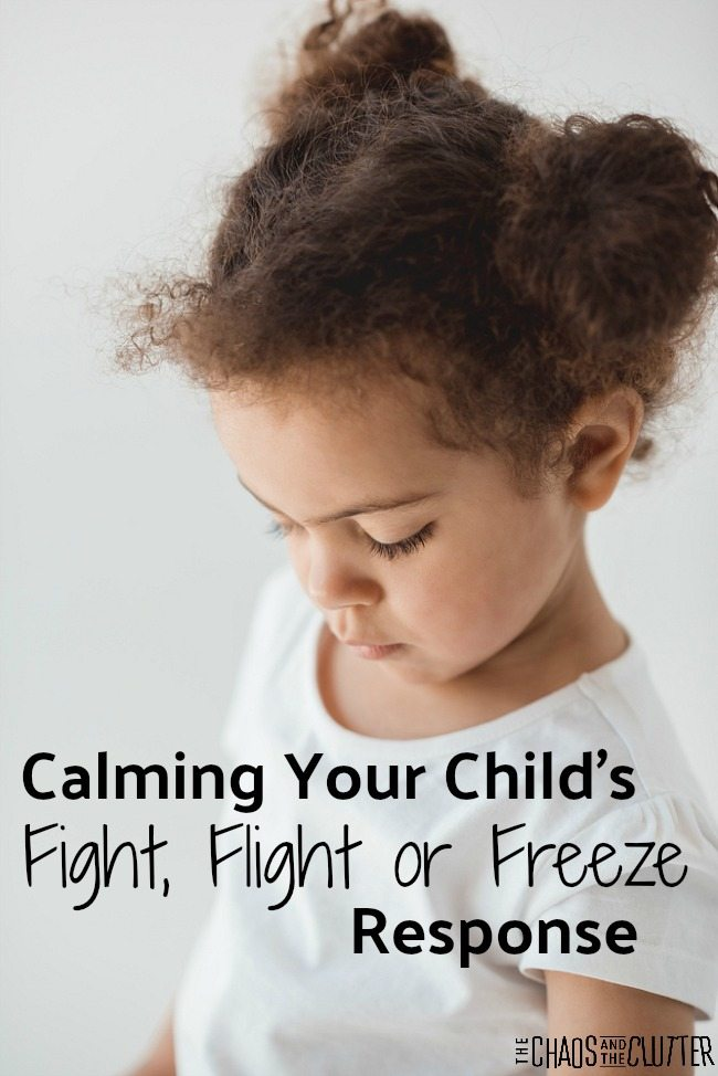 Calming Your Child's Fight, Flight or Freeze Response