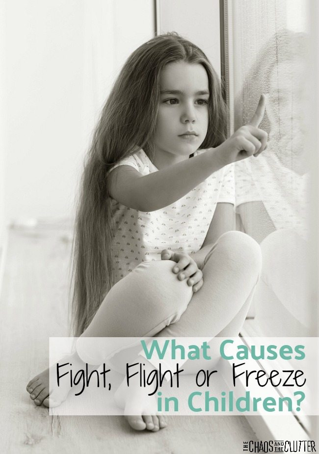 Determining what is triggering the fight, flight or freeze response in your child is an important step towards creating healing and lasting change.