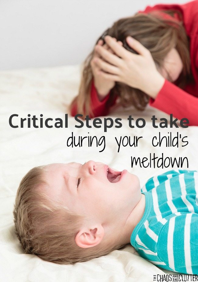5 critical steps to take when your child has a meltdown. This takes a bottom-up approach.
