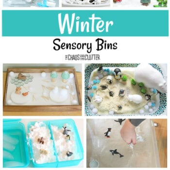 "a collage of different winter themed sensory bins and the words ""Winter Sensory Bins"""