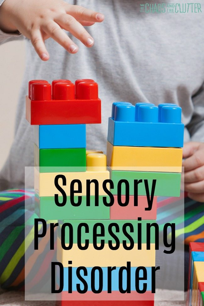 Everything Sensory Processing Disorder #sensoryprocessingexplained #sensoryprocessingdisorder #SPD #sensoryprocessing #sensory