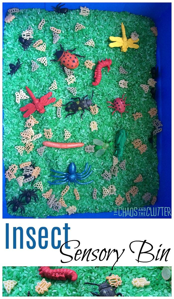 Insect Sensory Bin #sensory #sensoryplay #sensorybins #sensoryscience