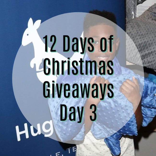 "white circle overlaid on top of another photo. Text reads ""12 Days of Christmas Giveaways Day 3"""