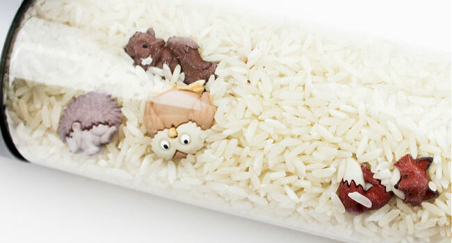 clear bottle filled with dry rice and forest animal buttons