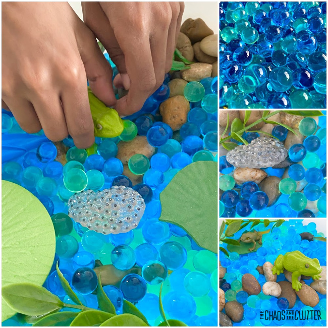 collage of photos of a frog sensory bin using water beads