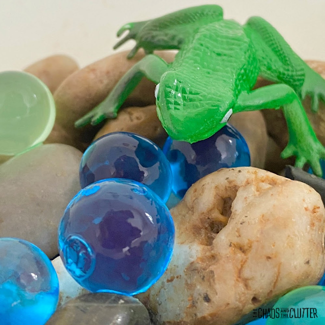small green toy frog on rocks and water beads