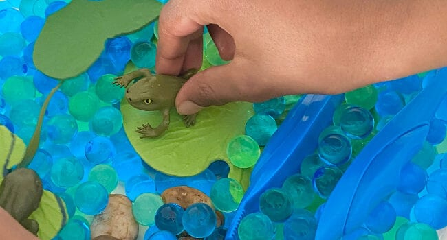 a hand holds a small toy frog on a plastic lily pad set on blue water beads